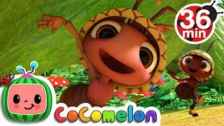 Download Ants Go Marching + More Nursery Rhymes & Kids Songs - CoCoMelon Video