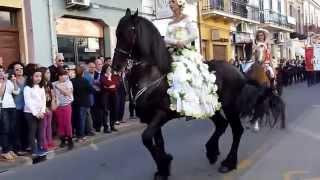 Download Santa Teresa di Riva (Me) - Un maestoso cavallo Frisone alla Festa della Primavera Video
