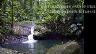 Download Cascades de la Ravine Bouteiller Video