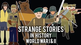 Download Strange Stories in History - Compilation Volume 1 Video