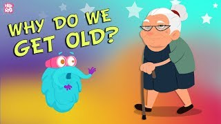 Download Why Do We Get Old? The Dr. Binocs Show   Best Learning Videos For Kids   Peekaboo Kidz Video