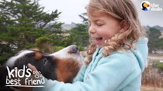 Download Enormous Dogs Love Taking Care Of Their Little Sister | The Dodo Kid's Best Friend Video