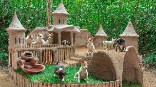 Download Collect abandoned Dog and Build Mud Dog House Video