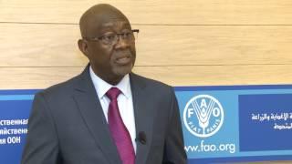 Download Déclaration du Ministre de l'agriculture et des aménagements hydrauliques du Burkina Faso Video