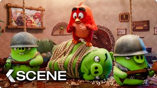 Download The Pigs Invade Red's Home Scene - THE ANGRY BIRDS MOVIE 2 (2019) Video