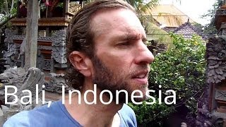 Download My super awesome guesthouse in Ubud, Bali for $20 a night (Indonesia) Video