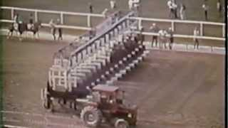 Download Secretariat Belmont Stakes 1973 & extended coverage (HD Version - NEW!) Video