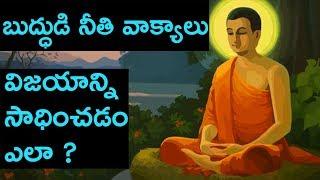 Download BUDDHA TEACHINGS ON LIFE IN TELUGU | GAUTAMA BUDDHA QUOTES IN TELUGU | LIFEORAMA Video