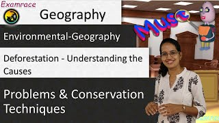 Download Deforestation - Understanding the Causes, Problems and Conservation Techniques Video