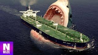 Download Megalodon - Der Größte Hai Aller Zeiten Video