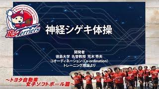 Download 神経シゲキ体操 女子ソフトボール部篇 Video