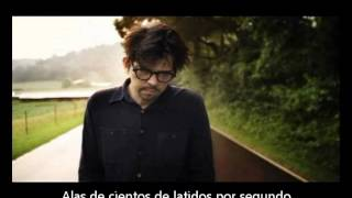 Download Sparklehorse - Hundreds of sparrows (Subtitulado Español) Video