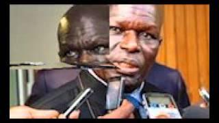Download ″L'esclavage et ses conséquences actuelles″, (Doudou Diène FSM Dakar 2011) Video
