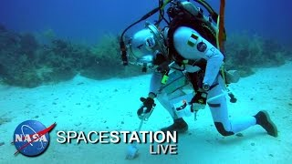 Download Space Station Live: From Underwater, The NEEMO Commander Video