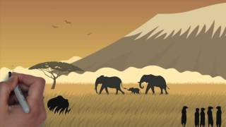 Download Protect Endangered African Wildlife Animals And Species Video