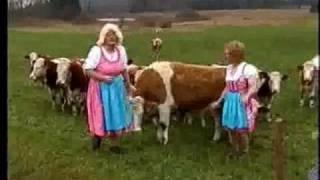 Du Hast Heut Geburtstag Text Und Melodie Lukas Di Nunzio Free