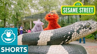 Download Sesame Street: Murray Goes to the Zoo Video