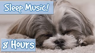 Download The Ultimate Dog Sleep Soundtrack! Soothing Tones, Relaxing Music to Calm Dogs and Relieve Anxiety🐶 Video