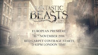 Download Fantastic Beasts And Where To Find Them: Live European Premiere from London Video