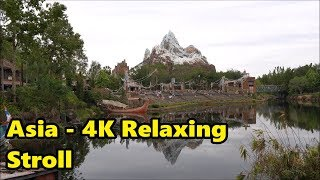 Download Asia at Disney's Animal Kingdom   Relaxing Stroll in 4K Video