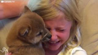 Download Little Girl Gets A Puppy For Her Birthday And Just Can't EVEN Video