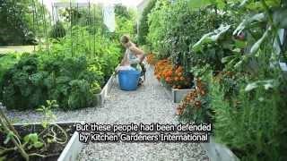 Download Drummondville's front yard vegetable garden Video