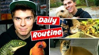 Download Daily Pet Care Routine! (Reptiles, Birds, + More!) Video