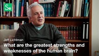 Download Developmental Neurobiology - Jeff Lichtman Video