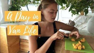 Download LIVING IN A VAN - my normal day Video