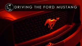 Download Driving The Ford Mustang GT | Crowd Hunter Video