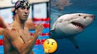 Download Michael Phelps ″Ui Kilpaa″ Valkohaita Vastaan? Microsoft Paint Siirtyy Sivuun... Video