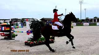 Download Horse show jumping falls compilation Video