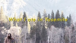 Download What I ate on a weekend trip to Yosemite (gluten free & vegan) Alli Cherry Video