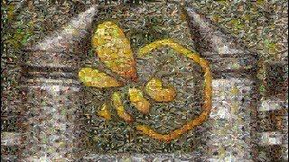 Download Pasieka Początkującego Pszczelarza - #100 Podsumowanie i niespodzianka :) Video