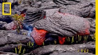 Download Follow a Lava River's Mesmerizing Path of Destruction   Short Film Showcase Video