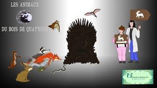 Download #74 - Les Animaux du bois de Quat'Sous - Ces dessins animés-là qui méritent qu'on s'en souvienne Video