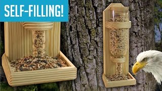 Download DIY Wine Bottle Bird Feeder Video
