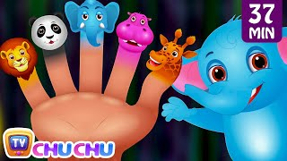 Download Finger Family Nursery Rhymes | Animal Finger Family Songs Collection | Learn Wild Animals | ChuChuTV Video