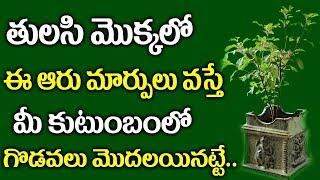 Download తులసి మొక్కలో ఈ ఆరు మార్పులు వస్తే మీ కుటుంబం తల్లకిందులు అవుతుంది ..!    Tulasi Tree Unknown Facts Video