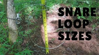 Download Snaring - What Loop Size and Height ? Video