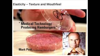 Download Mark Post: Medical Technology Producing Hamburgers; Science & Cooking Public Lecture Series 2016 Video