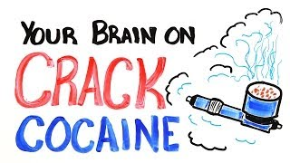 Download Your Brain on Crack Cocaine Video