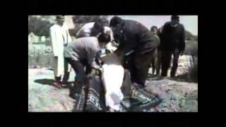 Download Қабырге тірі адам көмілді болған оқиға Video