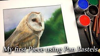 Download Using color pencils over Pan pastels fot the first time - I was scared to use these! Video