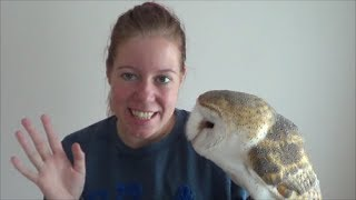 Download Will my owl fly away when I take it outside ? Video