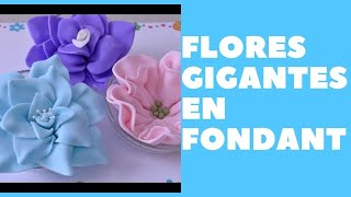 Download Flores en Fondant - Grandes Video