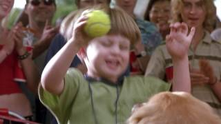 Download Air Bud Spikes Back Video