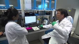 Download Nanyang Technological University, College of Engineering Video