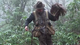 Download Hunting with Goshawks in Essex Video
