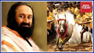 Download Jallikattu Is Bigger Than Diwali And Holi : Sri Sri Ravishankar Video